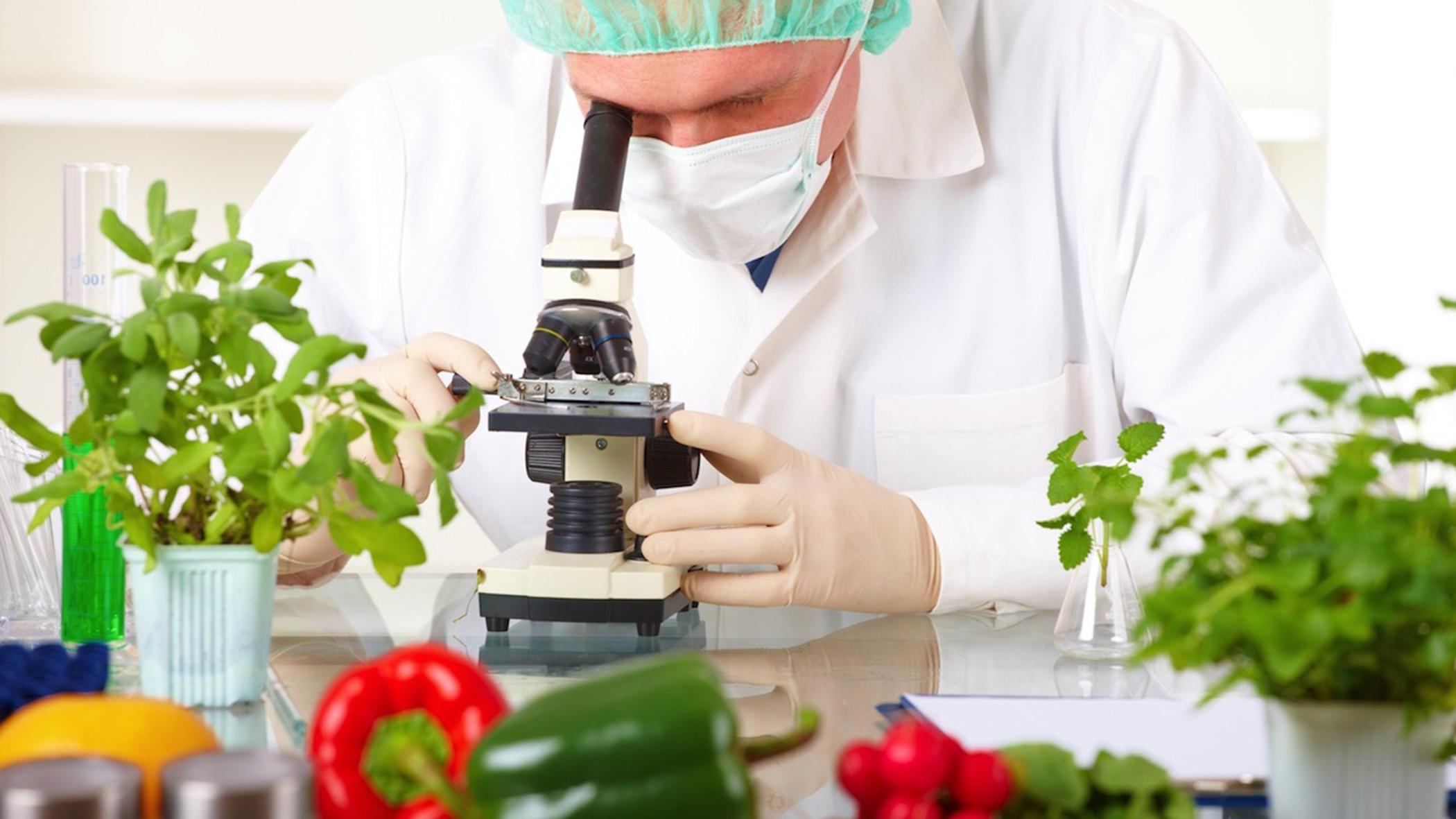 ΕΦΕΤ: Κατάρτιση προσωπικού επιχειρήσεων τροφίμων
